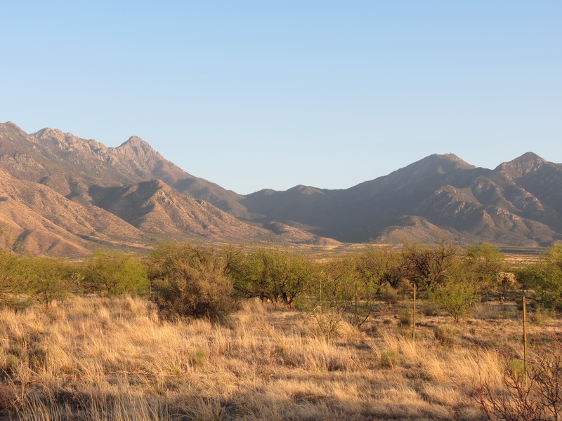 Dulcy Misotti Rojas | Santa Rita Mountains | Arizona Highways