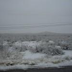 snowy brkfst 2-9-13 - 01