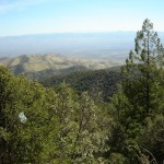 Overlooking the valley - 1
