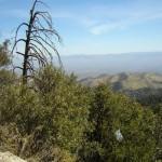 Overlooking the Valley - 2